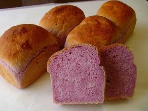 天然酵母パン(紫芋)のイメージ